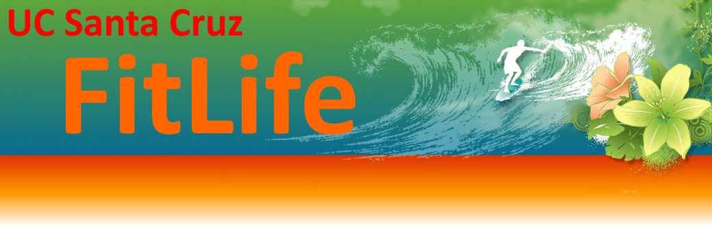 UCSC FitLife Banner Orange